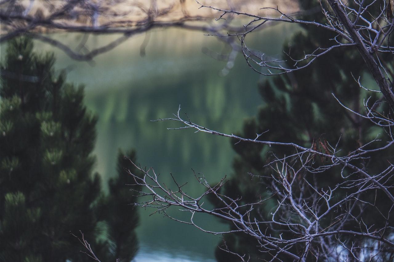 Lake Disctrict